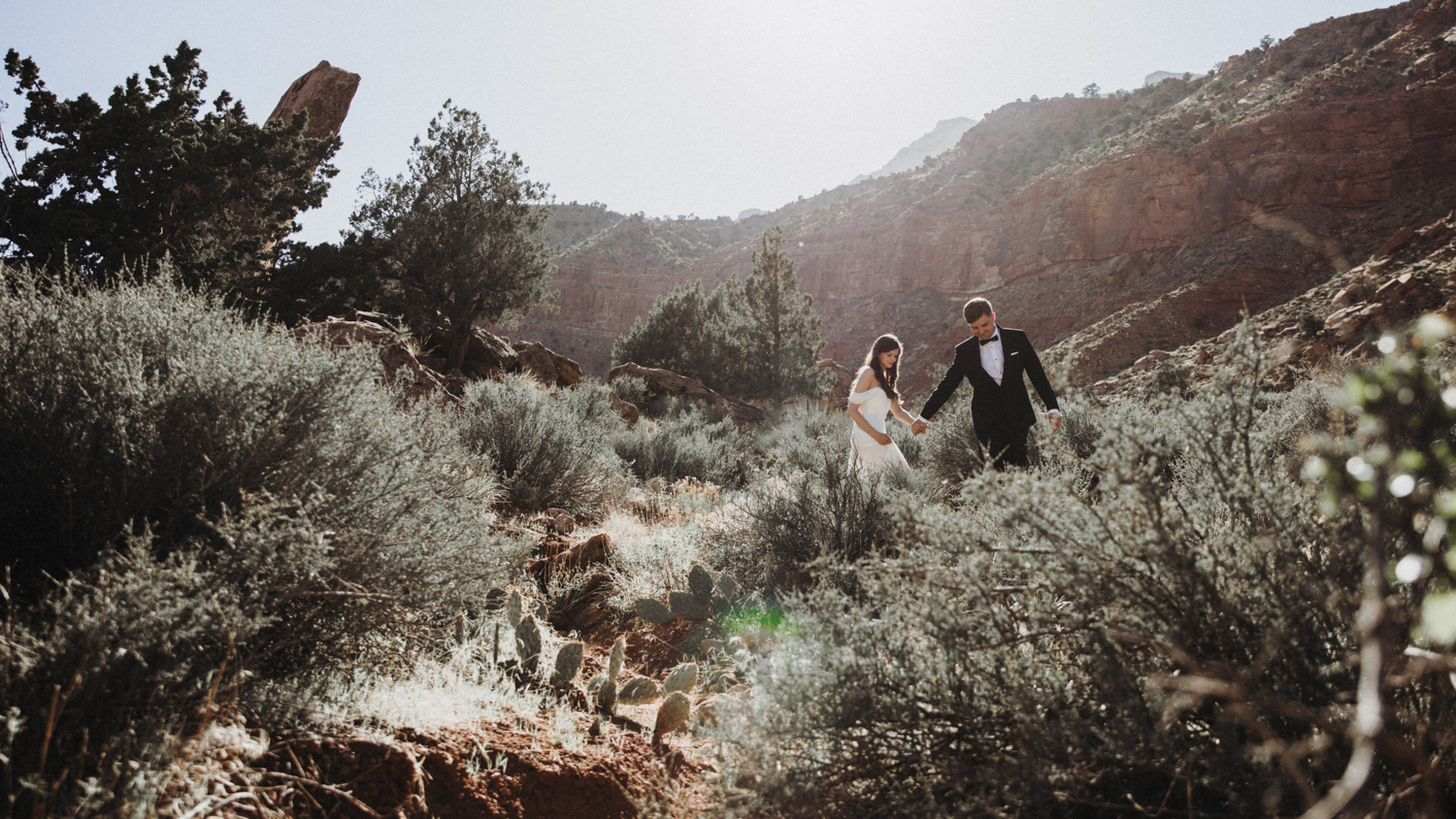 After Wedding Zion Park USA 6